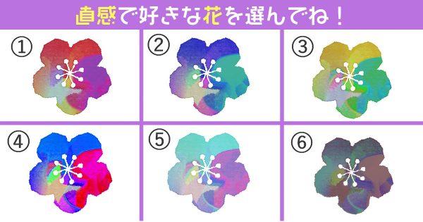 【心理テスト】あなたの好みは「和風寄り?洋風寄り?」選んだ花が表します。
