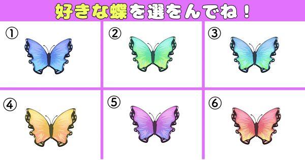 【心理テスト】選んだ蝶が表す、あなたの性格の「オンとオフの差の激しさ」