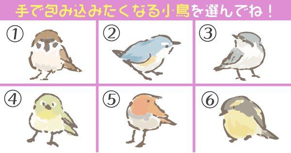 小鳥 面倒見の良さ,心理テスト