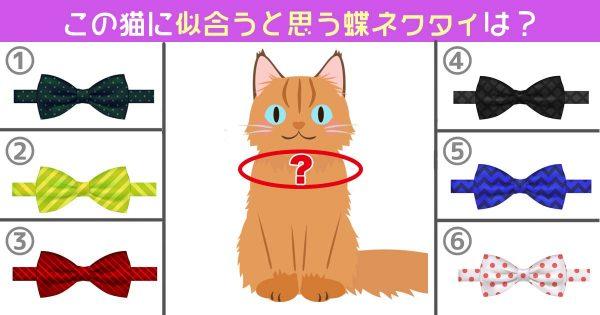 【心理テスト】この猫に似合う「蝶ネクタイ」を選んでください。