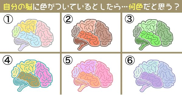 【心理テスト】あなたの脳には色がついてます。どの配色ですか…?