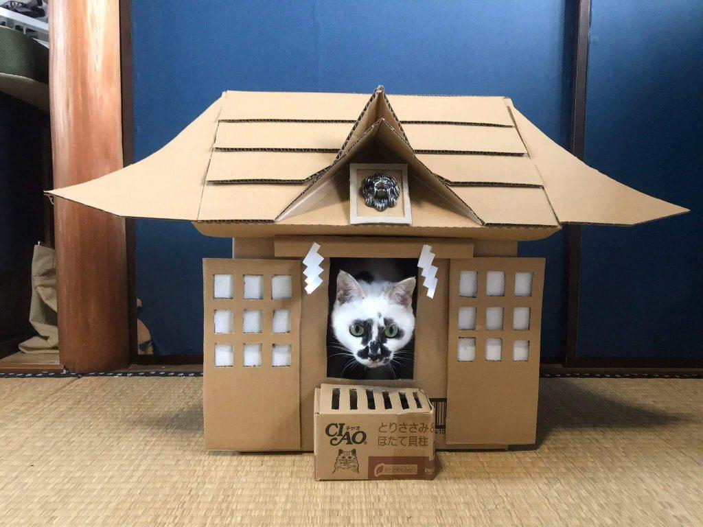 猫神社2-1