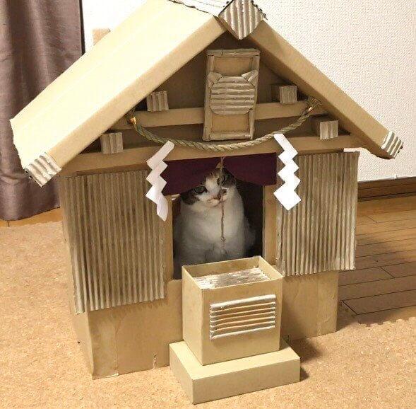 猫神社3-2