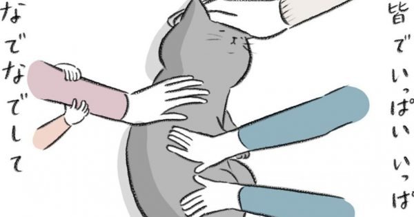 亡くなった猫が家族を回想する漫画「なでなでしたい」気持ちが溢れる...
