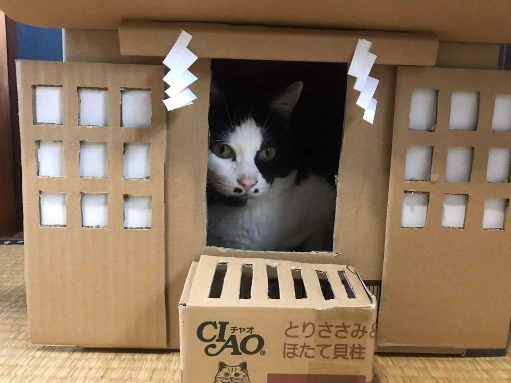 猫神社2-3