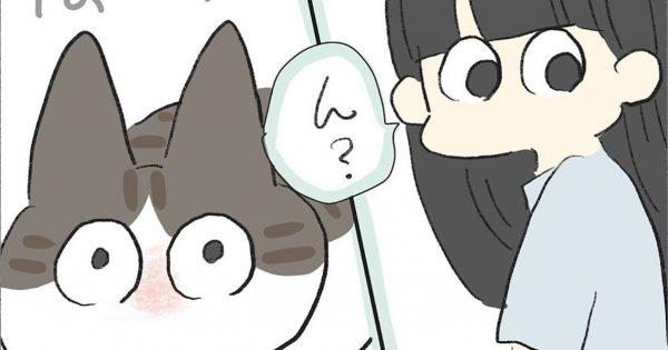 猫好きだけが知ってる「あるある」→グイグイ来ないけど、撫でられ待ち。