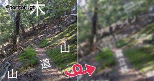 【ただの山だけど、猟師にはこう見える】知識と教養が役立つとわかる話 8選
