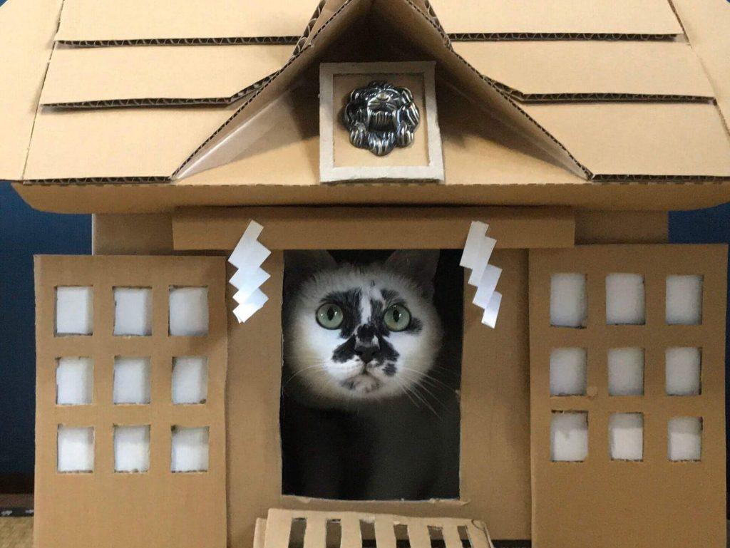猫神社2-4