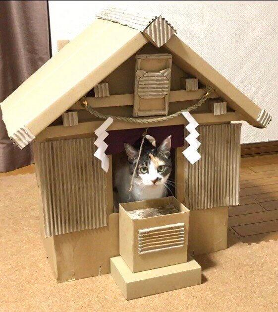 猫神社3-3