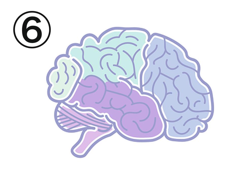 脳 色 忙しさ 心理テスト