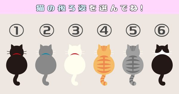 【心理テスト】あなたは生粋の「世話好き?」かも?振り向かせる猫で性格チェック