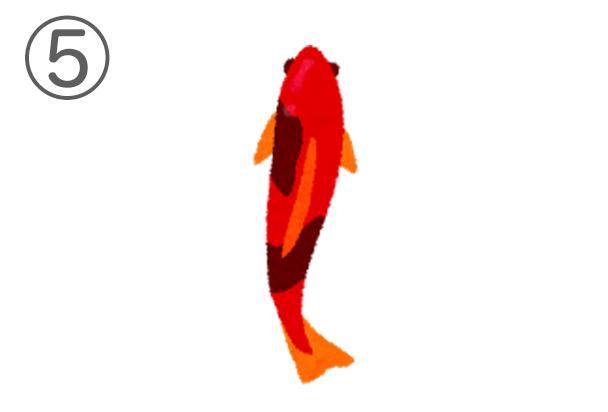 5kingo