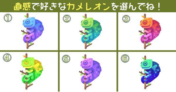 【心理テスト】カメレオンがこっそり教える…「あなたの5種の性格」