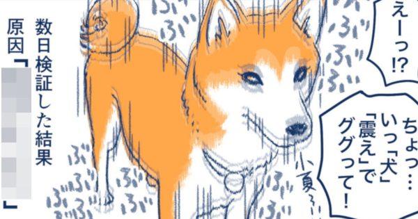 柴犬の「隠し機能」が最高にキュートなんだけど知ってた?