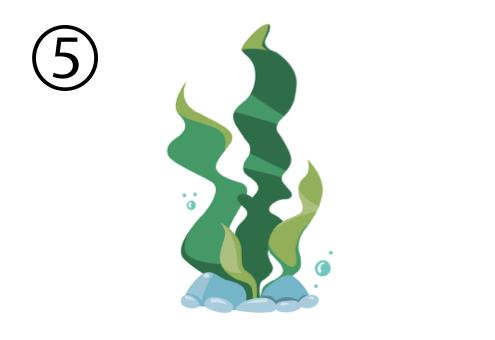 海藻 二択 迷う 心理テスト