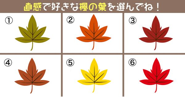楓 漢字 心理テスト