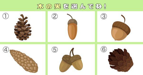【心理テスト】あなたの性格の「素直さレベル」診断!木の実を選んでね