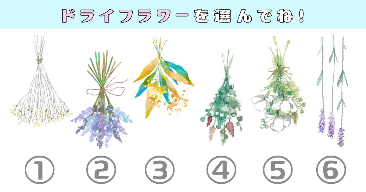 dryflowerEYE
