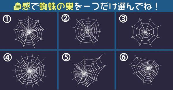 【心理テスト】選んだ蜘蛛の巣で、あなたの「ハプニング遭遇率」がわかります!