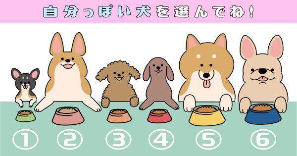 【心理テスト】あなたは「働き者?それとも遊びが命?」犬を選ぶと性格がわかる