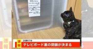 【おもしろ速報】テレビ裏が閉鎖に…住民の声「猫1匹じゃどうしようもない」