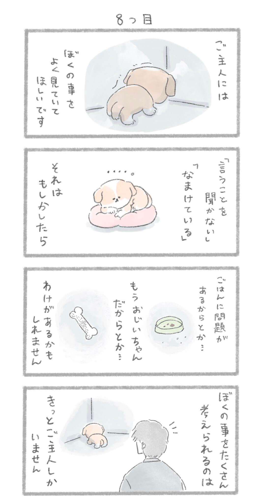 犬の十戒3-1