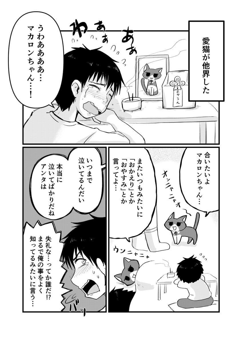 愛猫が幽霊になった1-1