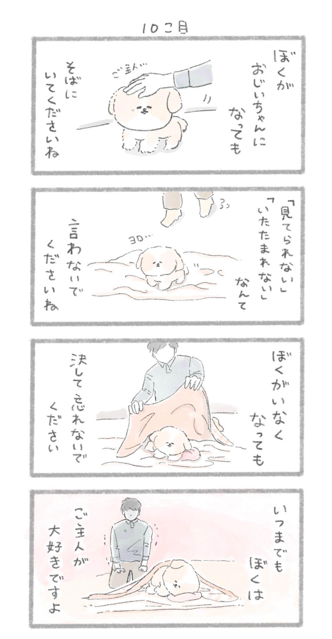 犬の十戒3-3