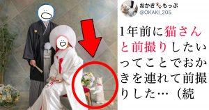 猫ちゃんも「結婚記念写真」に参加させたら…?一生の思い出になりました