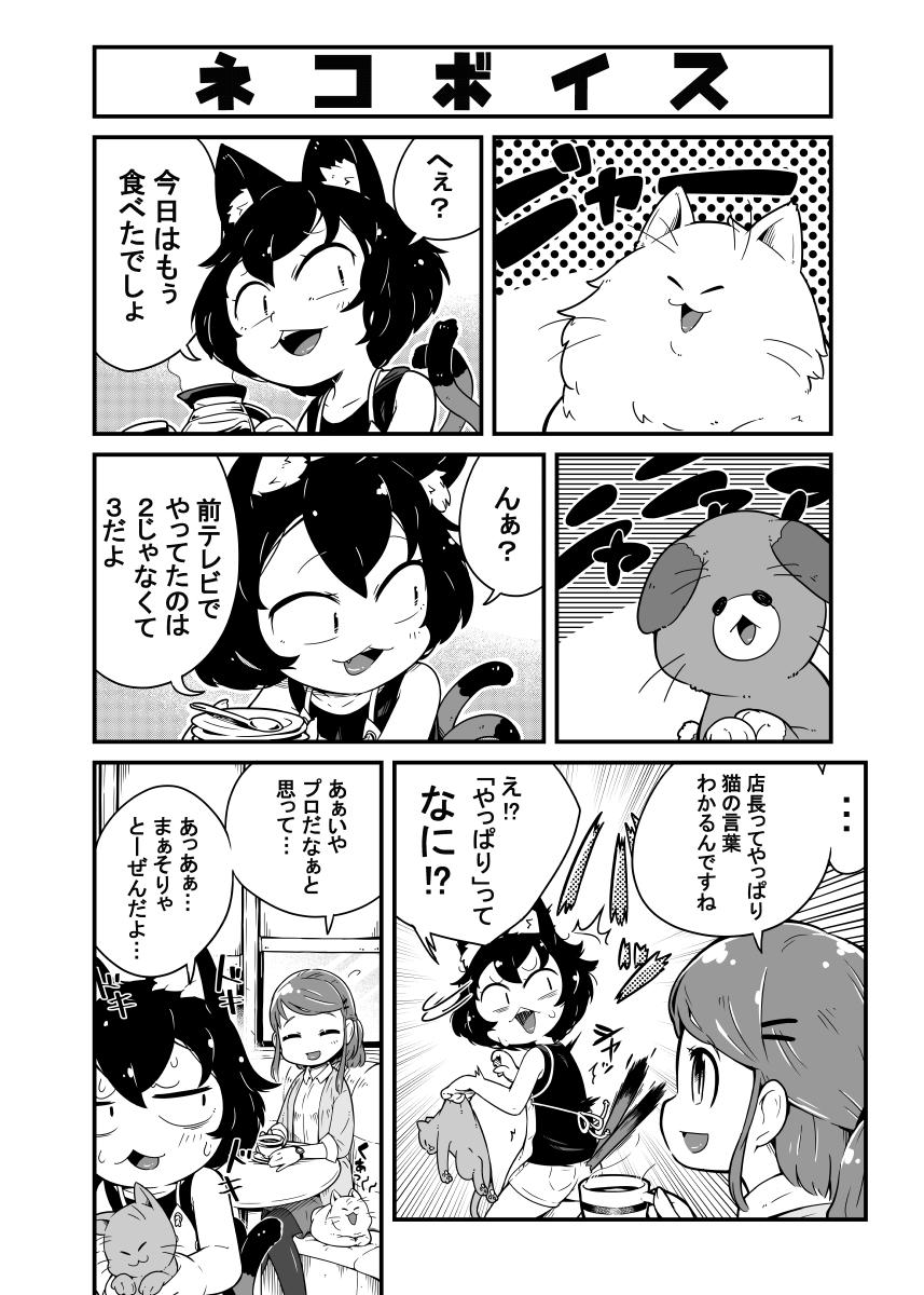 猫カフェの店長のお話2-1
