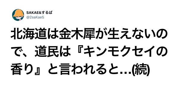 日本人って秋の風物詩「キンモクセイの香り」好きすぎでは? 10選