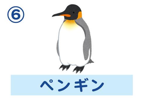 水族館 自分ルール 心理テスト ペンギン