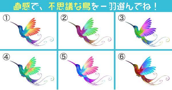 鳥 子供 心理テスト