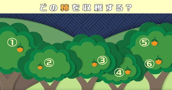 【心理テスト】あなたの性格の「渋さ」はどれくらい…?柿を選んでね