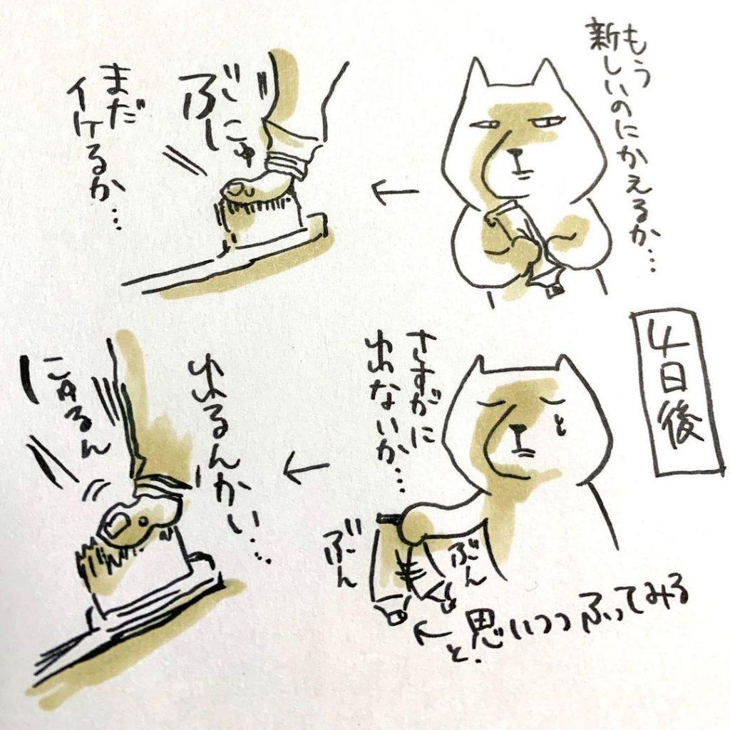 momotachinako_82051457_249952119308988_1534805840693492150_n