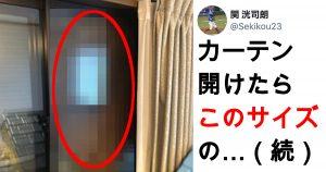 【閲覧注意】窓一面が「アレ」に覆われた恐怖の館…!