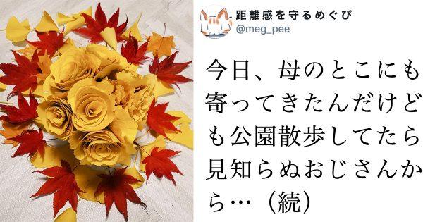 散歩のプロか!?謎のおじさんが教えてくれた「秋のバラ」が美しい!