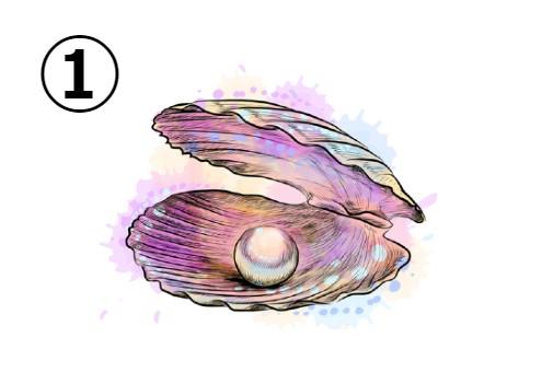 貝殻 性格 心理テスト