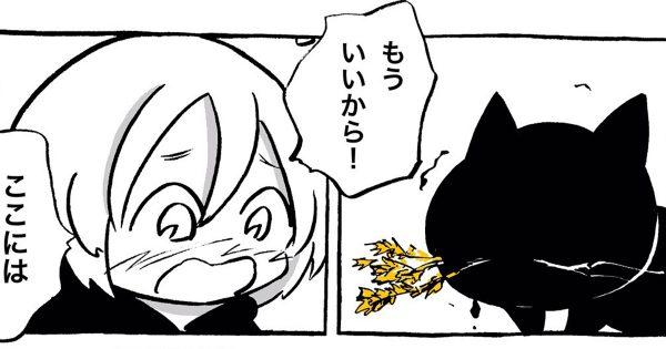 黒猫とエニシダeye