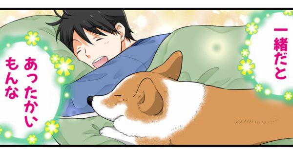 「犬あるあるエピソード」がめっちゃ可愛い件