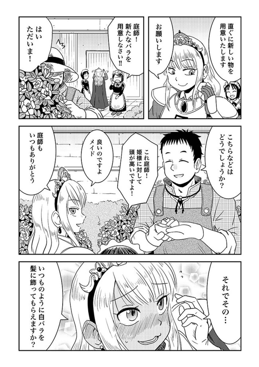 最強の姫騎士と白バラ1-3