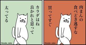 【ダイエット川柳18連発】カラダはね 良かれと思って 太ってる