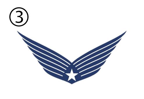 羽 シンボル 来年 勇気をくれる人 心理テスト
