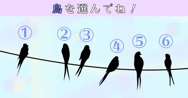 【心理テスト】自分の「一番強い欲求」、理解してる?気になる鳥を選んでね
