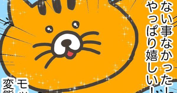 「どんな時でも100%愛されてると信じて疑わない猫」の可愛さ知ってる?
