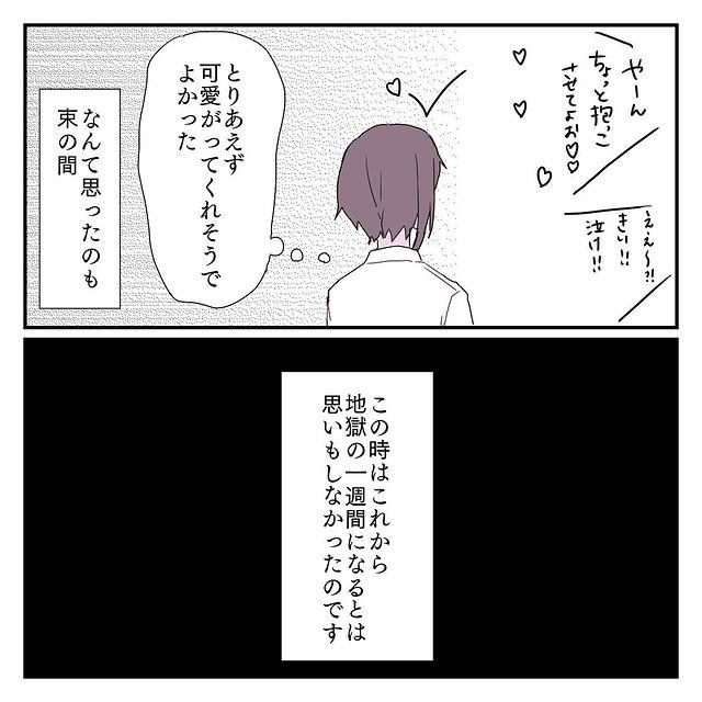 miyuki_nikki1_126403272_207927020779804_368923652472269706_n