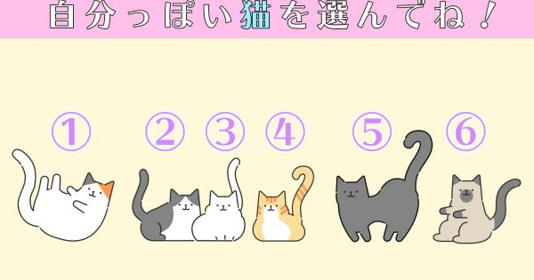【心理テスト】自分っぽい猫を選ぶと…?あなたの性格の「甘え上手レベル」が判明