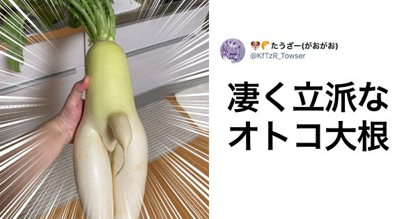 「自我が芽生えた野菜」獲ったどー!! 8選