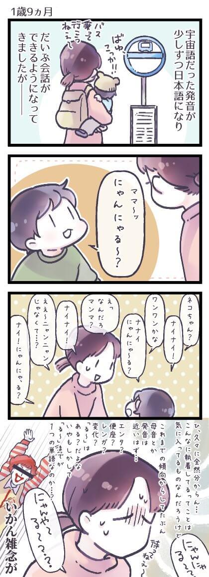 るしこ2-1