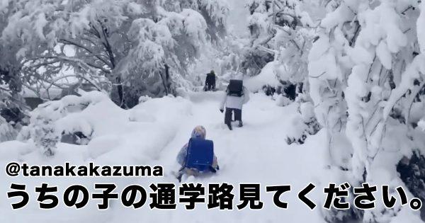 兵庫県の降雪量に「マジ?」ハードすぎる通学路にエールが殺到